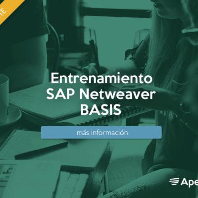 Entrenamiento SAP Basis Netweaver