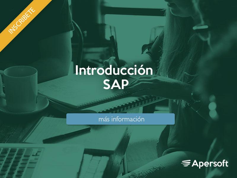cursox600-SAP-IntroSAP.jpg